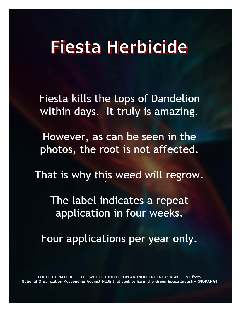 Green Alternative -- Fiesta Herbicide (40)