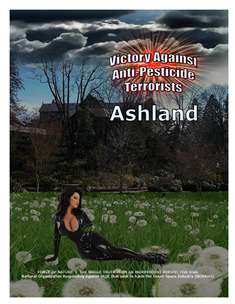 VICTORY AGAINST TERRORISTS -- WEB-PAGE -- Ashland -- 314 x 235 px