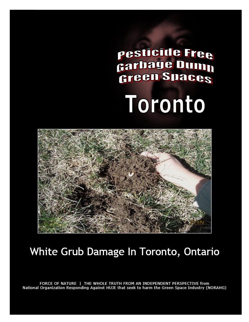 Garbage Dumps -- Photo Gallery -- Toronto (6) -- White Grubs