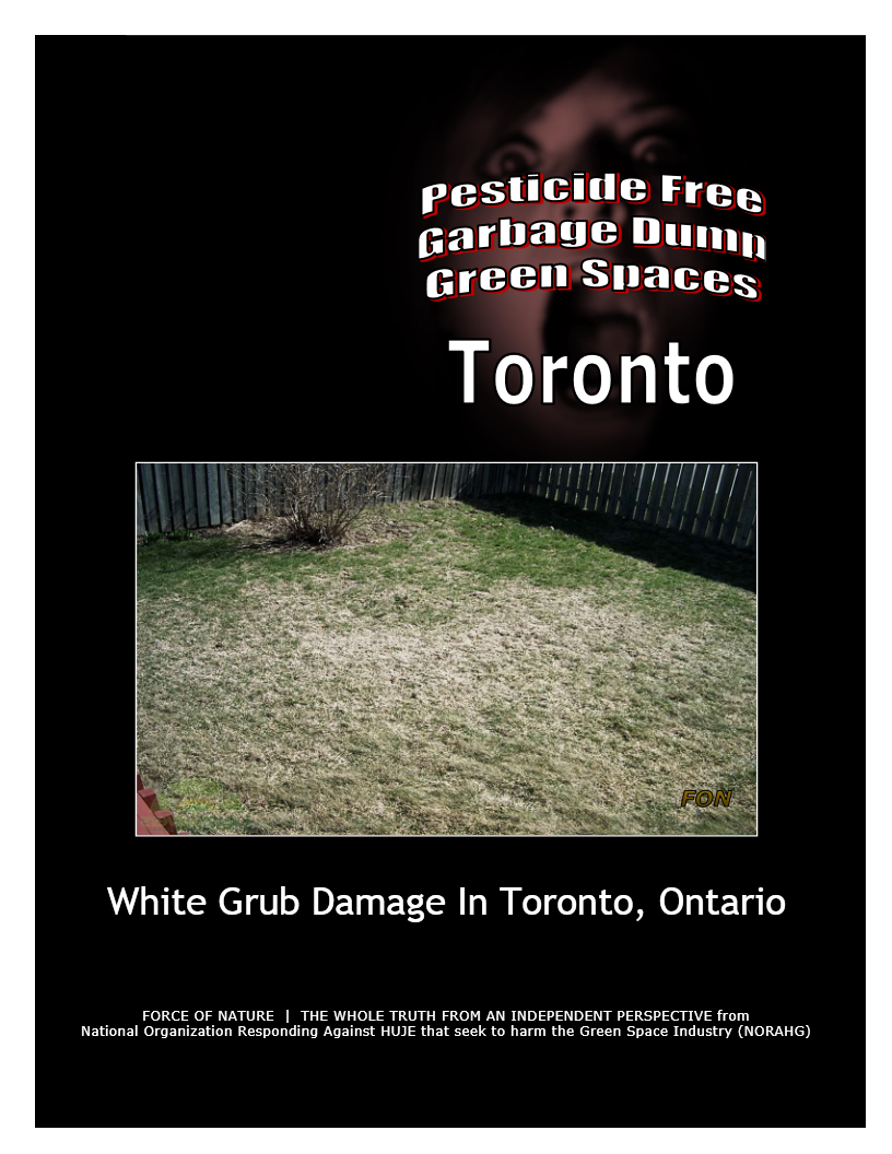 Garbage Dumps -- Photo Gallery -- Toronto (7) -- White Grubs