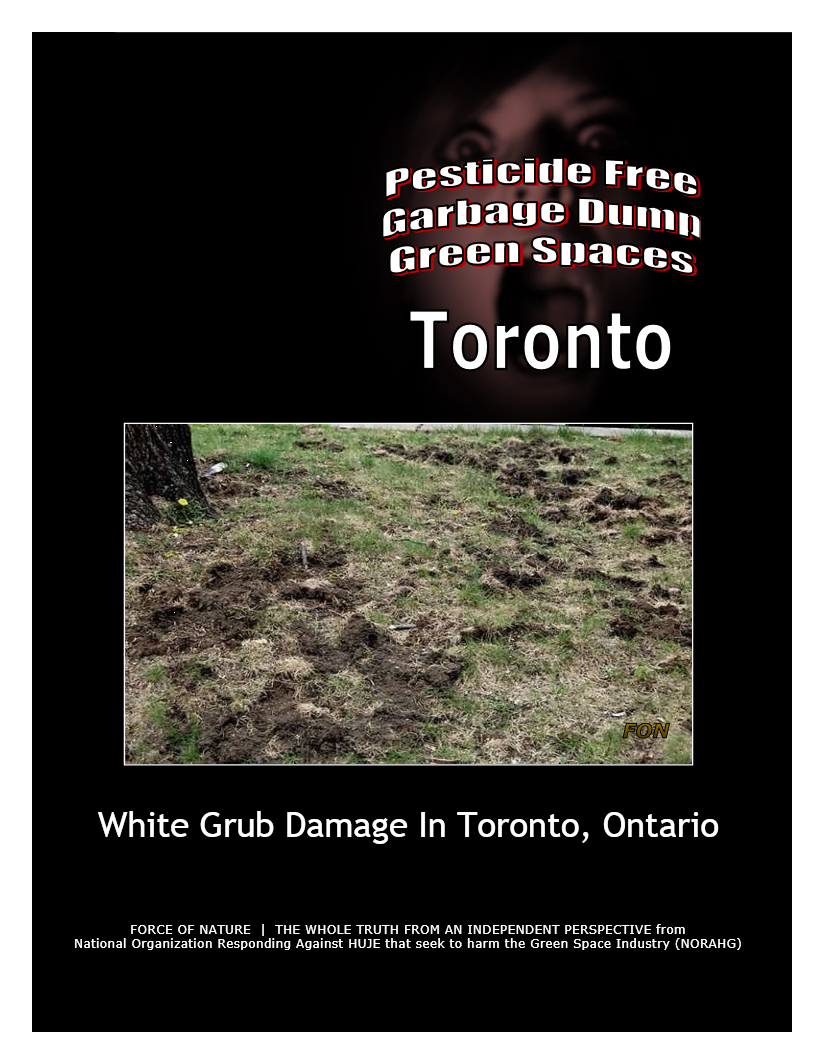 Garbage Dumps -- Photo Gallery -- Toronto (8) -- White Grubs