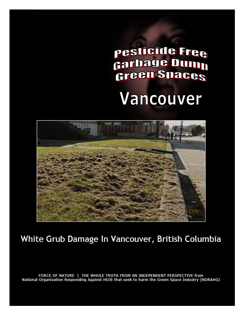 Garbage Dumps -- Photo Gallery -- Vancouver (2) -- White Grubs