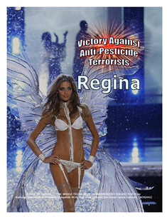 VICTORY AGAINST TERRORISTS -- WEB-PAGE -- Regina -- 314 x 235 px