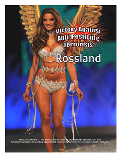VICTORY AGAINST TERRORISTS -- WEB-PAGE -- Rossland -- 314 x 235 px