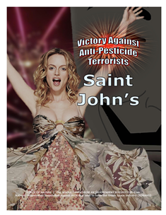 VICTORY AGAINST TERRORISTS -- WEB-PAGE -- Saint John's -- 314 x 235 px