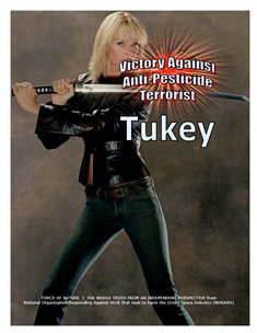 VICTORY AGAINST TERRORISTS -- WEB-PAGE -- Tukey -- 314 x 235 px