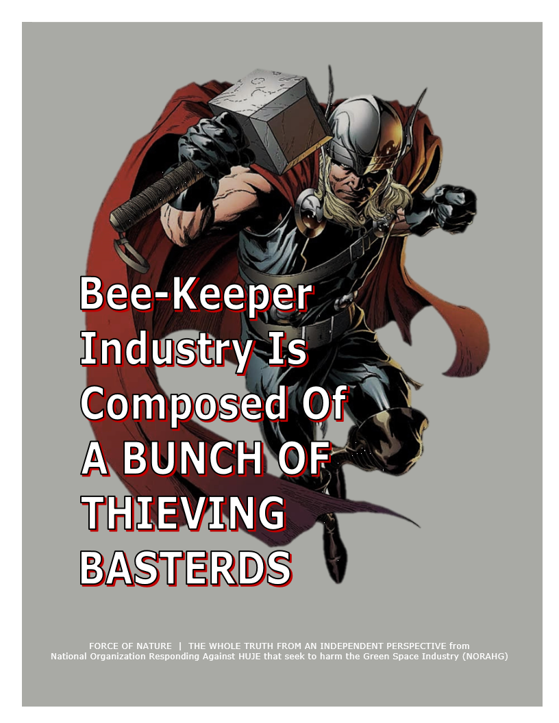 Myth-BUSTING -- Bees -- Bee-Keepers STEALING From Other Bee-Keepers (19)