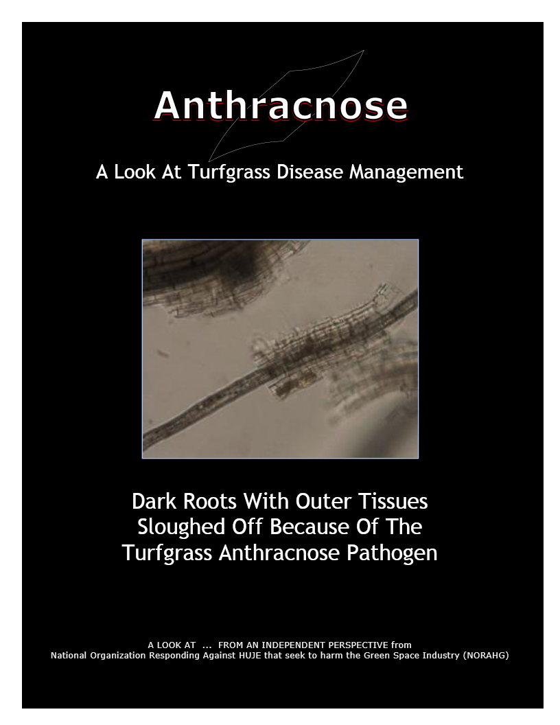 A Look At -- Anthracnose (12)