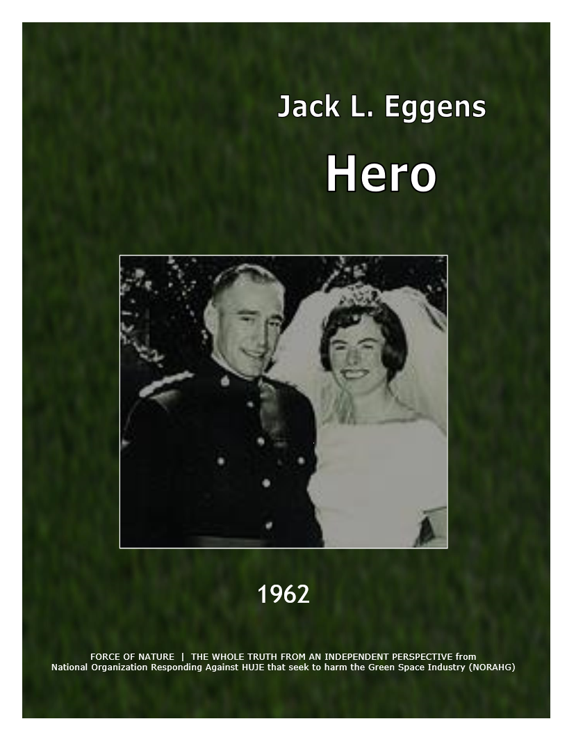 Hero -- EGGENS, Dr. Jack L -- GREEN BACKGROUND (16)