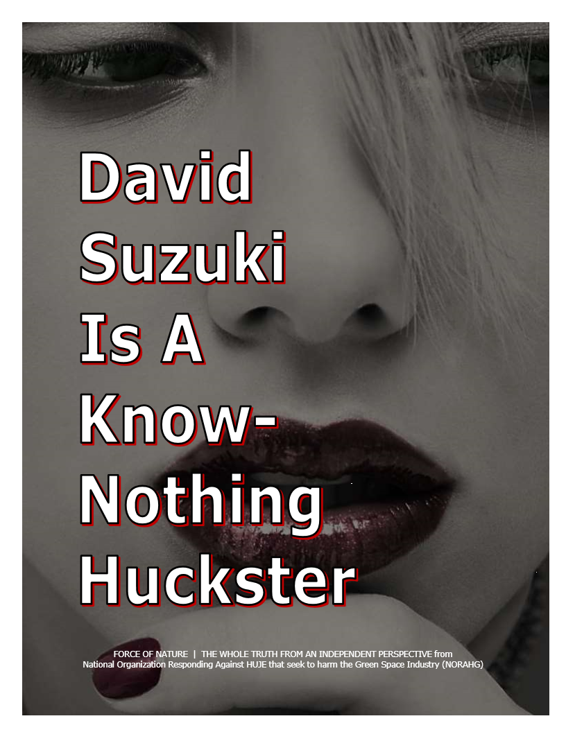 Know-Nothing Huckster (1)