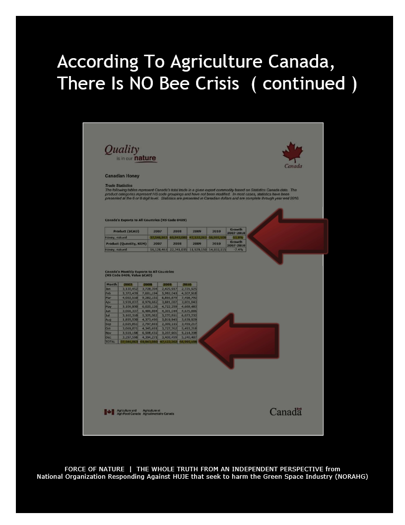There Is NO Bee Crisis (10)