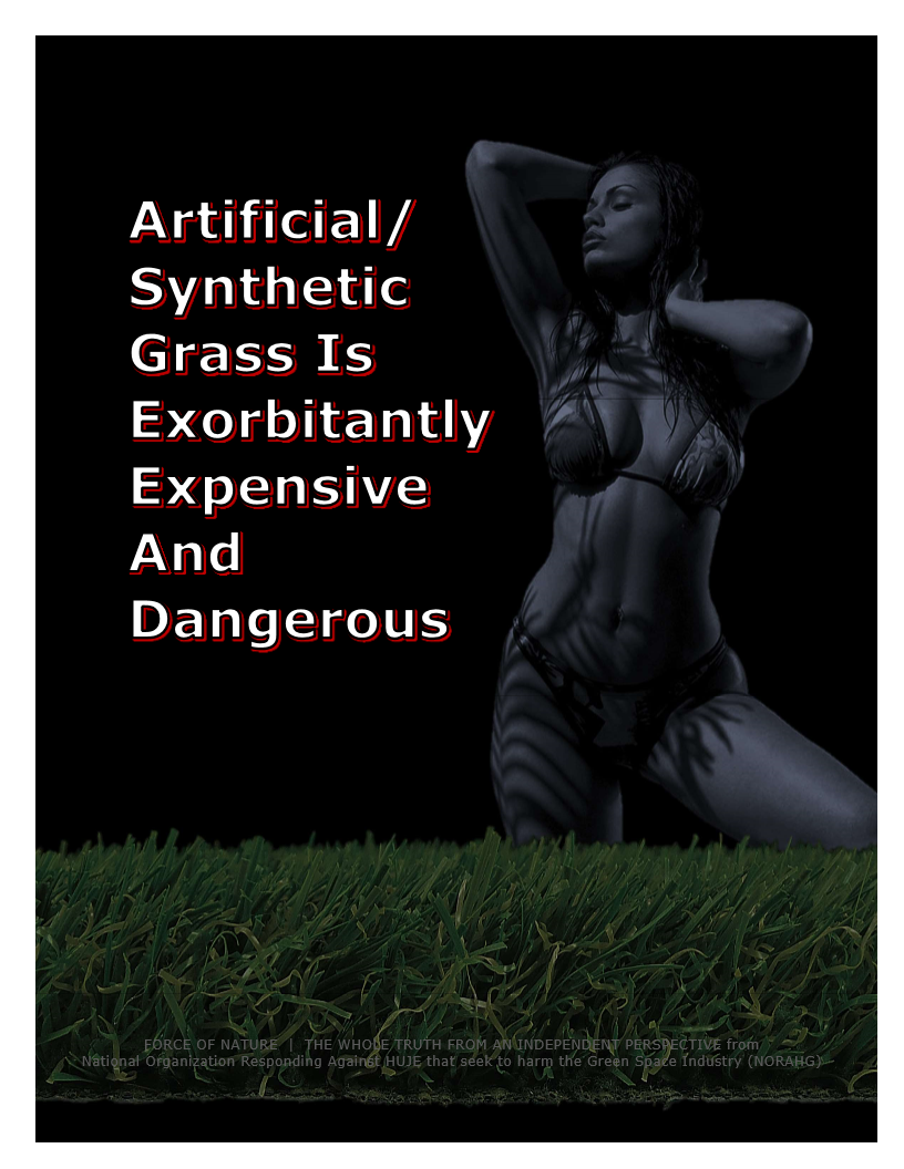 Artificial-Synthetic Grass (6)