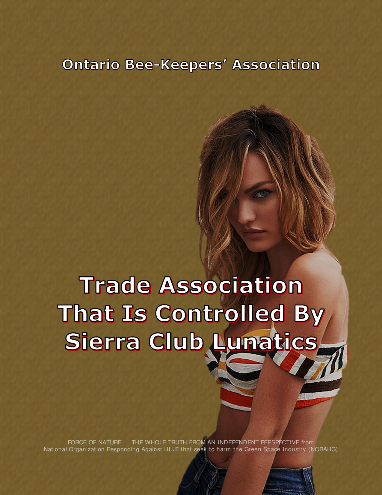 Ontario Bee-Keepers' Association (7)