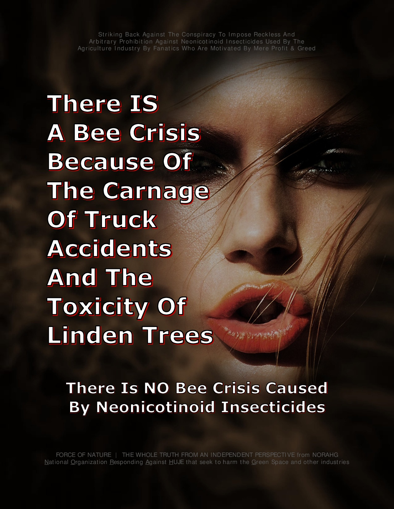Bee Colony Collapse Disorder -- Truck Accidents -- 1 -- Bee Crisis-0