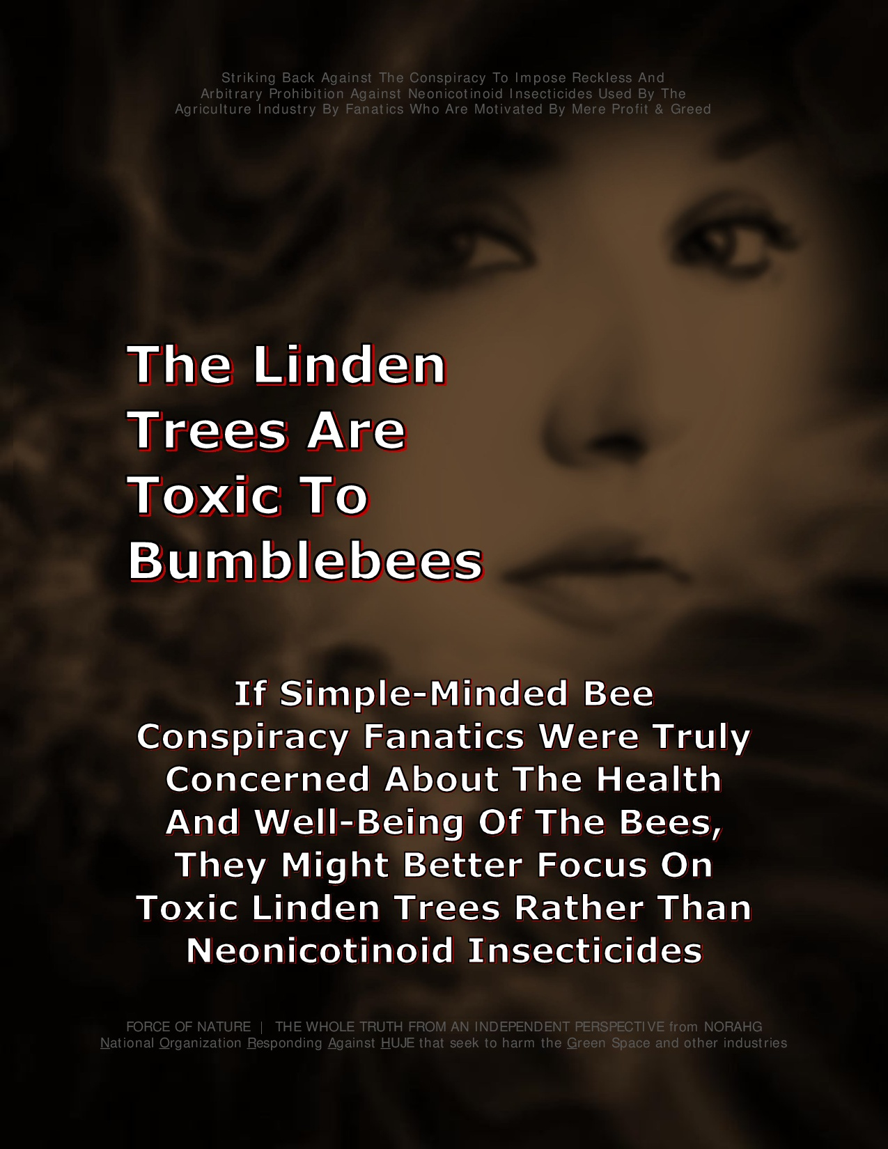 Bee Colony Collapse Disorder -- Truck Accidents -- 1 -- Linden Trees-0