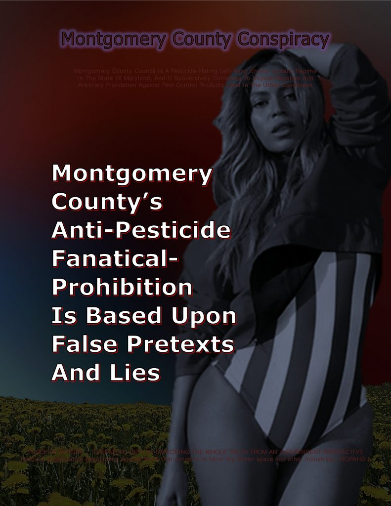 force-of-nature-u-s-terrorism-titles-for-cards-montgomery-county-17-beyonce-usa-2